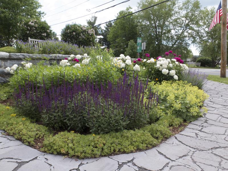 Williamstown Garden Club